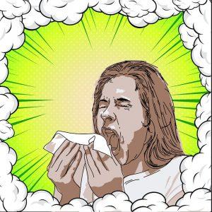 Rimedi naturali allergie