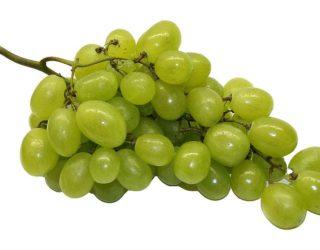 Bimba morta per acino d'uva