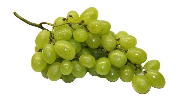 Bimba morta per acino d'uva: si sarebbe soffocata a Vimercate