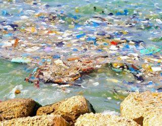 plastica lago d orta