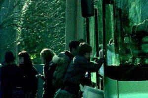 Verbania, minorenne si prepara spinello sull'autobus: fermata dai Carabinieri